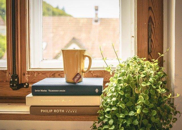 観葉植物、風水