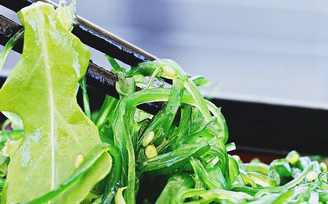 海藻、風水