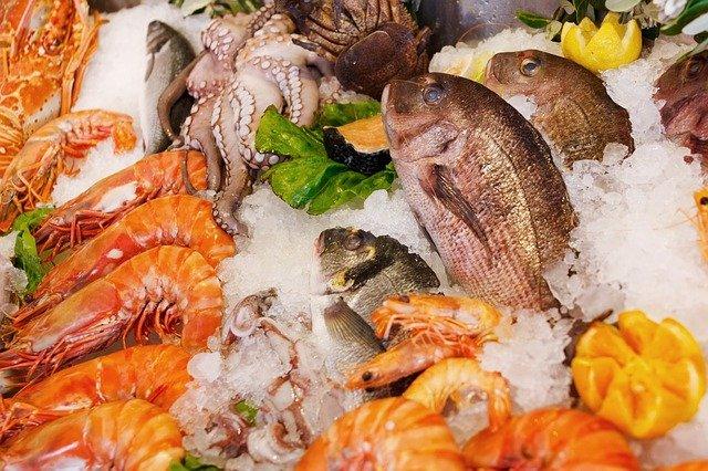 魚介類、食風水